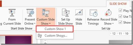 Name Of Custom Show