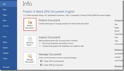Info - Protect Document